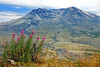 Mount St. Helens' catastrophic eruption on May 18, 1980, was the deadliest and most economically destructive volcanic event in the history of the United States.