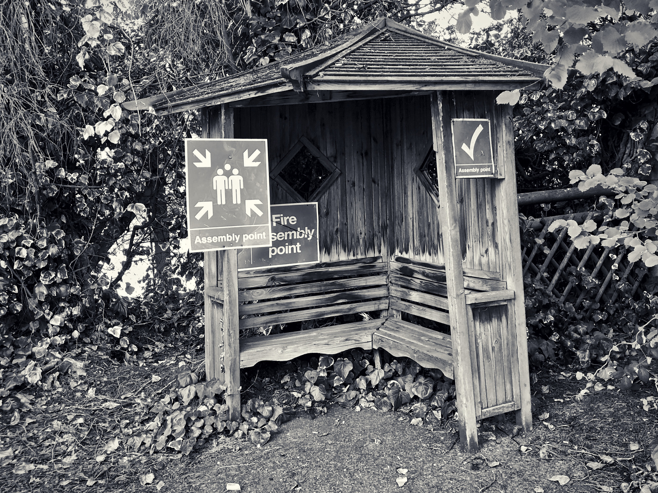 Rustic assembly point