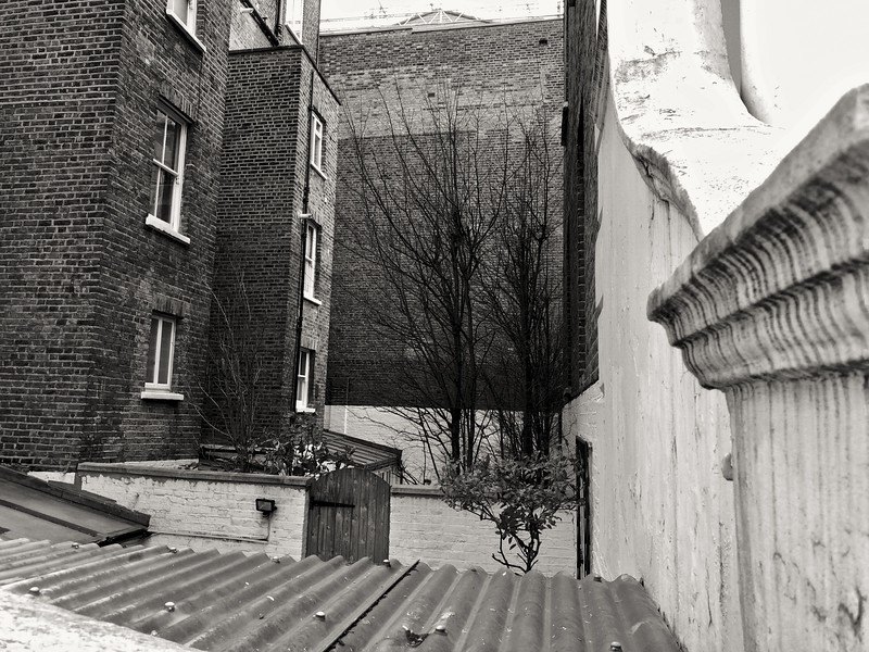 Behind houses in Chelsea