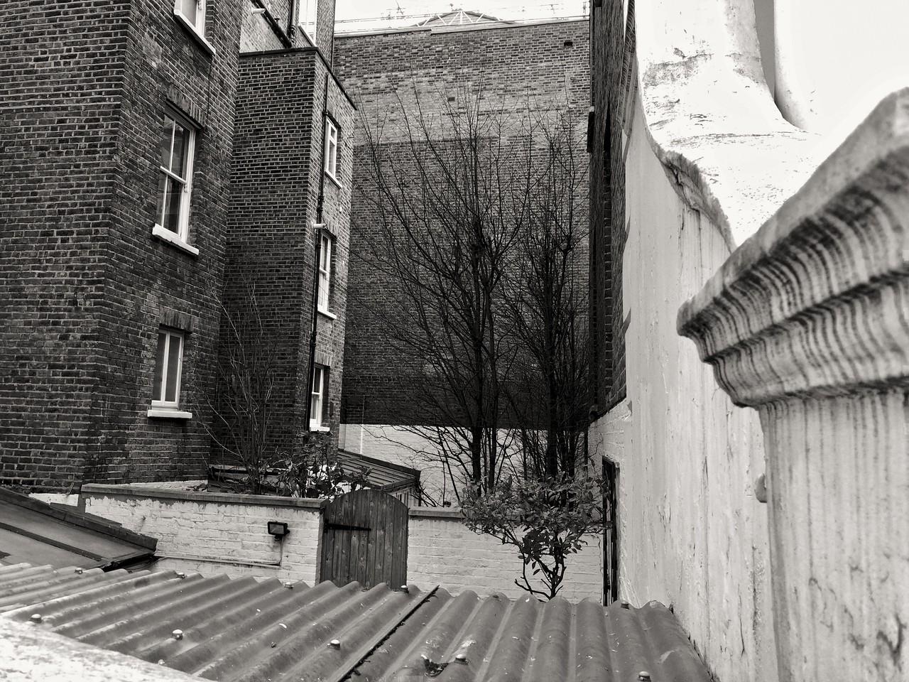 Behind houses in Chelsea