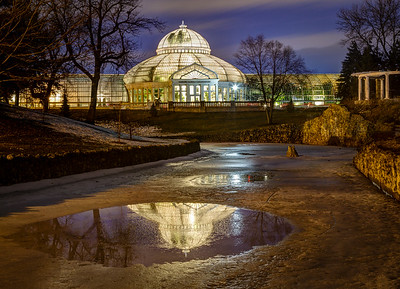 Conservatory Reflections