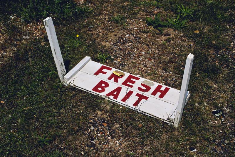 Fresh Bait