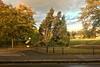 On Mitcham Common