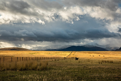 Camas Prairie north of Perma, MT