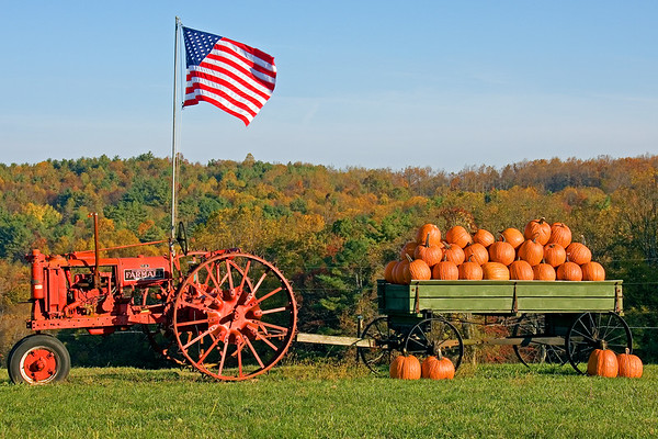 October pumpkins along the Blue Ridge Parkway in Virginia.