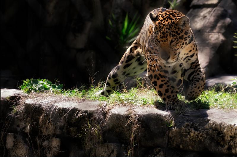 JWLeePhoto-12763