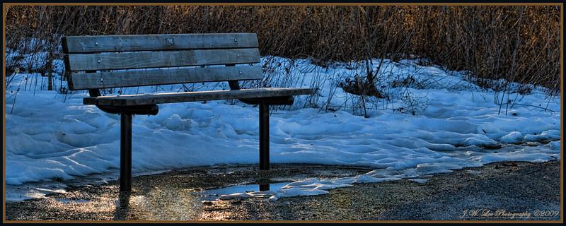 Winter Resting