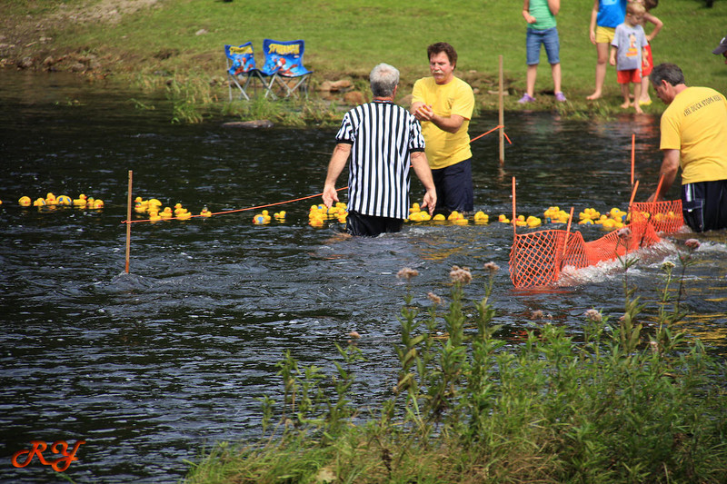 Bald Mountain Campground; Duck Race - catch them and start all over