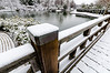 First snow at the Missouri Botanical Gardens.<br /> <br /> © Copyright Philip Leara - Creative Commons - Attribution-NonCommercial-ShareAlike (CC BY-NC-SA 3.0)