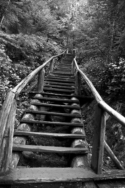 Squamish Chief Stairs