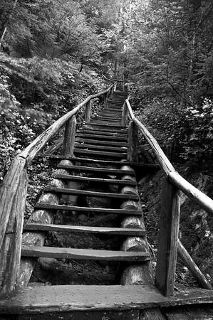 Squamish Chief Stairs