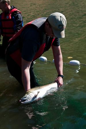 Phillips River 2011-102