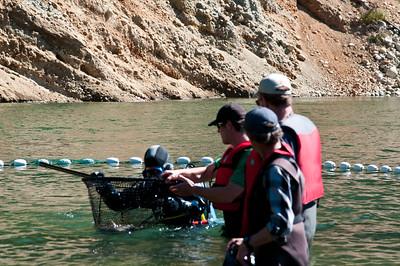 Phillips River 2011-131