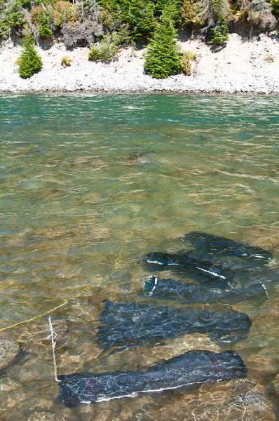 Phillips River 2011-148.jpg