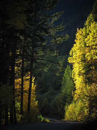 Autumn on the Bugaboo road