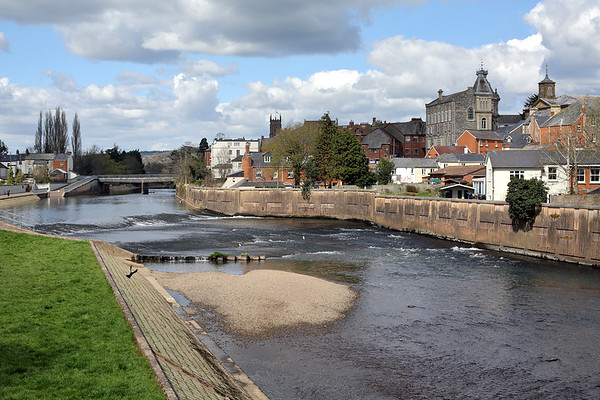 River Exe, Tiverton, Devon 16/4/2016