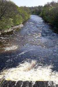 River Ericht, Blairgowrie, Scotland 28/4/2014