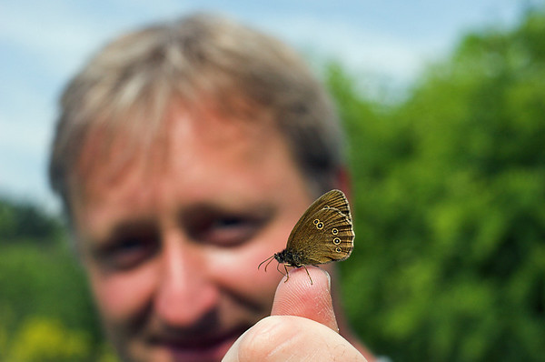 Moth, near Szerecsezvy, Hungary 27/6/2012