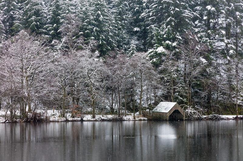 Snowing Ard 2
