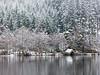 Snowing Ard