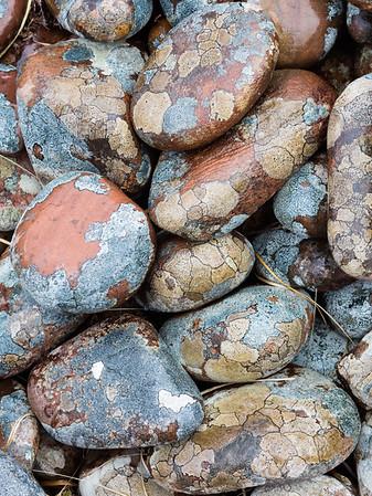 Lichen Stones