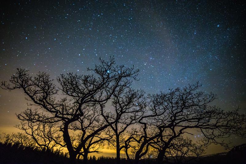 Loch Achray by Night 2