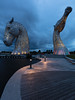 Kelpies Yellow