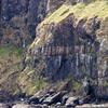 Canna Cliffs