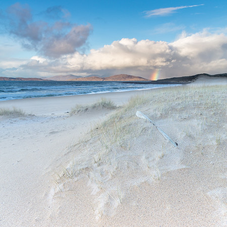 Forest of Harris Rainbow