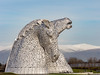 Kelpies and Ochils