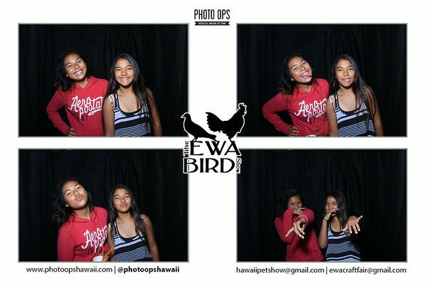 Ewa Bird Show (Stand Up Photo Booth)