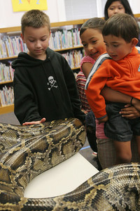 "Gabe and Barbi Kerschner allow children to touch, ""Miss Piggy"" the Python at the SSF Down Town Library. Wild Things Inc. visited the library with six different wild animals for children and grown ups to see. The organization, which has over 60 species of wildlife, takes in animals that have been rescued from stress situations and for one reason or another cannot return to the wild.  The organization uses these animals to instruct young and old alike about living harmoniously with natureÕs habitat."