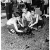 Man in La Brea tar pit (rescued dog), 1951