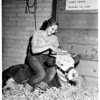 San Diego County Fair, 1951