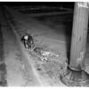 Dog guards dead pal, 1951