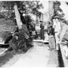 Tree blown over at 638 West 81st Street, 1951