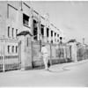 Wrigley Field gets scrubbing, 1961