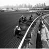 Horses -- race -- Santa Anita -- opening day, 1957