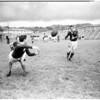 Rugby -- Australian Wallabies, 1958