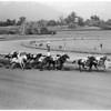 Horses -- race -- Santa Anita, 1958