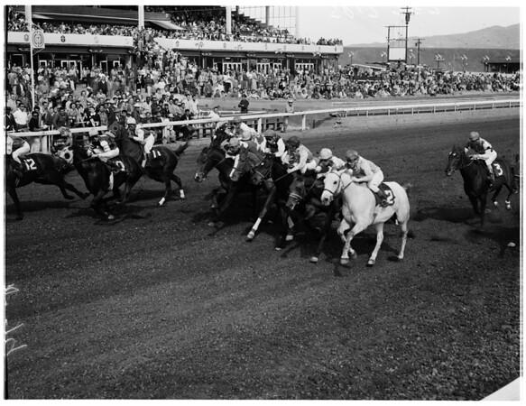Horses -- race -- Caliente races, 1958