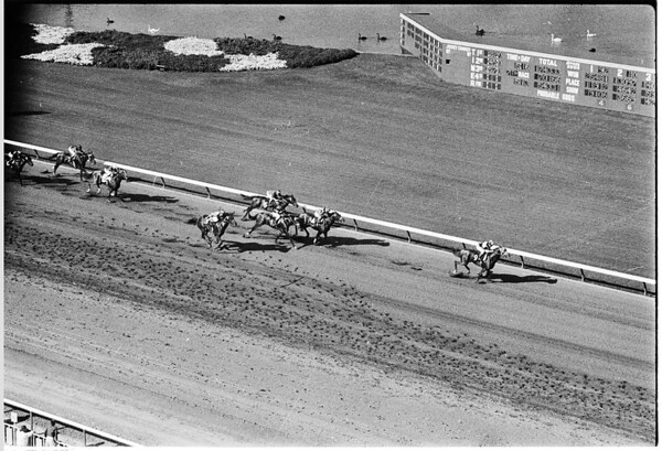 Races at Santa Anita photon series, 1958