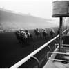 Horses -- race -- Santa Anita: San Antonio handicap, 1958