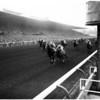 Horses -- race -- Santa Anita maturity, 1958