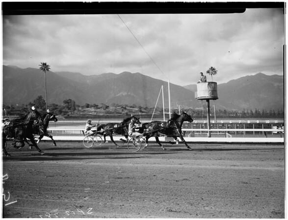 Horses -- race -- Harness race feature, 1958