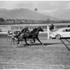 Horses -- race -- harness at Santa Anita -- 2 horse pacer race, 1958