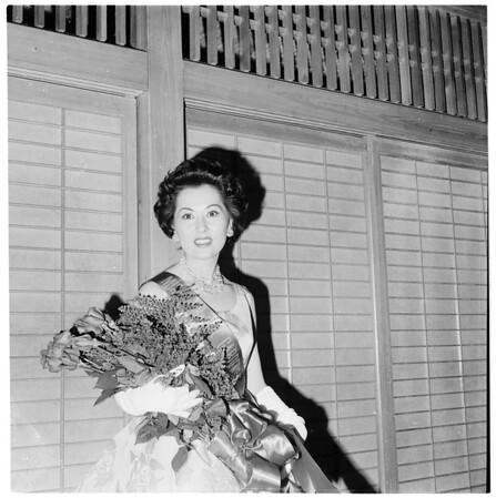 """Miss Sunset Strip"", 1959"