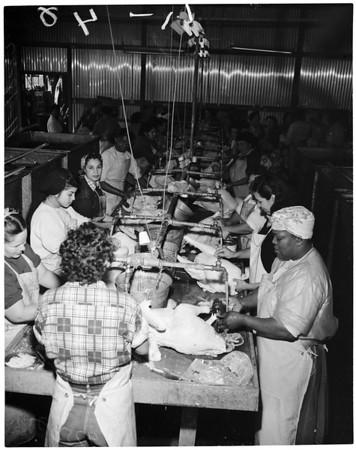 Turkeys in Arcadia (processing plant getting turkeys ready for Thanksgiving), 1952