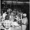 Turkeys in Arcadia (processing plant getting turkeys ready for Thanksgiving), 1952