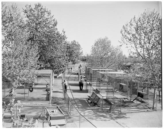 Prentice Park Zoo in Santa Ana, 1961